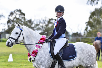 Kingsfred Destiny ridden by Macey Cooper, Champion Pony Club Mount