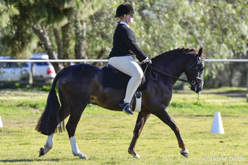 Corvan Park Cora Lynn ridden by Chloe Payne from Little River Pony Club