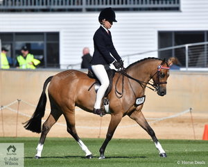 Caitlin Fricker rode her own and Victoria Fricker's charming, 'Clarendon' to take fourth place in the class for Novice Pony 13-13.2hh.