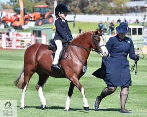 Regan Merry stepped aboard Taylor Shute's, 'Breemour Park Hot Gossip' and with a little help from mum,Andrea Merry took second place in the class for Leading Rein Show Hunter Pony.