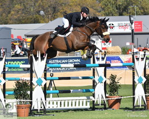 Billy Raymont won the World Cup class in Sydney last weekend riding the Clark and Brice nomination, 'Anton' and he also took out the first Part 1 class of the 2019 Royal Adelaide Show. Billy also won the Part 2 class earlier today riding his YPH Capulet.