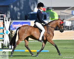 Well performed young Victorian rider, Tahlia Young rode her own, 'Rosedale Octavia' to win the class for Novice Pony 12.2-13hh.