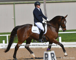 """""""Bloomfield Sorrento"""" ridden by Phillipa Molnar in the Elementary 3C placed 3rd with a score of 66.646%"""