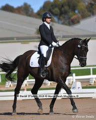 Medhi Woodrow ridden by Samantha Cesnik in the Elementary 3C