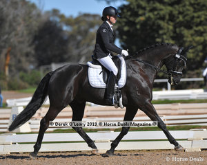 """Winners """"Sonic K"""" ridden by Karen Blythe in the Novice 2B with a score of 76.471%"""