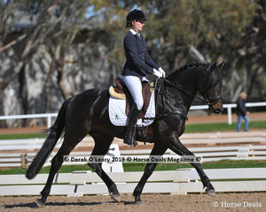 """Kingsley T"" ridden by Victoria Stuckey in the Novice 2B placed 6th with a score of 67.206%"