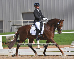 """Gowrie Park Cognac"" ridden by Tamara Campain in the Elementary 3C placed 2nd with a score of 67.013%"