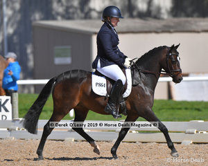 """Lynlea Print Design"" ridden by Paula Heffernan placed 4th in the Preliminary 1B with a score of 64.464%"