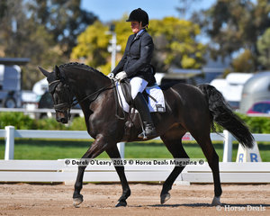 """""""Saki"""" ridden by Karen Sisely placed 5th in the Elementary 3B with a score of 63.875%"""