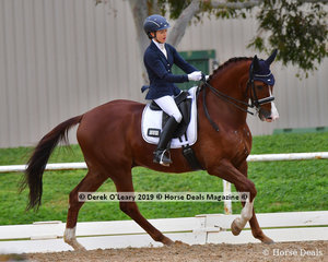 """""""Rock Royaltee"""" ridden by Melissa Robertson were the winners in the Medium Championship with a total score of 70 points"""