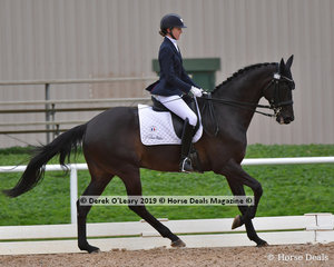 """Gitte Donvig rode """"Tobinski"""" placed 3rd in the Medium Championship with a total score of 65 points"""