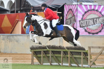 Everything old is new again. Years ago, this type of competition represented the jumping at the shows. Adelaide reintroduced this competition a few years ago. Josh Slape took fifth place in the gentleman's Hunter class riding, 'Diamond J Banjo'.
