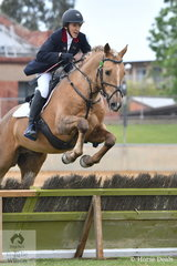 Vivien Fuller is pictured aboard her eye catching stallion, 'Davien Solei Rex' during the class for Lady's Hunter.