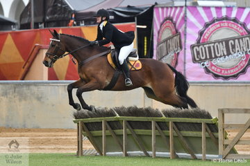 Representing the Salisbury Hunt Club, Karen Tanner is pictured riding, 'Bailee' during the class for Lady's Hunter.