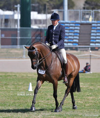 """Mark Kiddle rode the Pavia Family and M & M Performance Horses entry """"TS Dante"""" to take Reserve Champion in The CBC TRAVEL Small Saddle Horse event."""