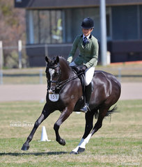 """The PROACTIVE ANIMAL HEALTH Champion Large Show Hunter Galloway """"Inverdale Winds Of Change"""" and Mia Mondon-Skinner."""
