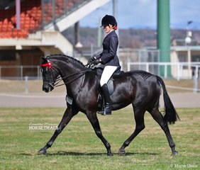 "Reserve Champion in The WESSEL DRILLING Large Galloway Championship was Naomi Brincau's ""Karma Park Bellagio"", ridden by Emma Adams."