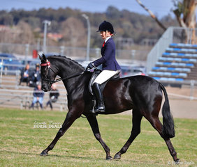 """The WESSEL DRILLING Large Galloway Championship was won by Renae Dorney and """"Mcarthurparc Star Soprano""""."""