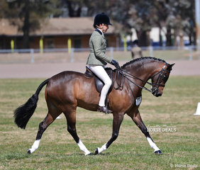 """Taylah Arnott and """"Fontain Park Sir Harvey"""" won The INDUSTRIAL METAL PROTECTIVES Large Show Hunter Pony Championship."""