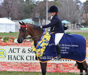 """The WHITE HORSE EQUESTRIAN Champion Small Galloway """"Allambie Park Finesse"""" and Ashley Gray."""