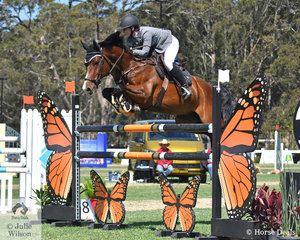 Maddison Stephen is pictured aboard her, 'Yalambi's Grazi' during the Lennock Motors Grand Prix Warm Up class.