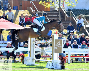 Brooke Campbell representing the Kiernan Transport team is pictured aboard, 'Copabella Voltage'  during round one of the Australian Teams Jumping League.