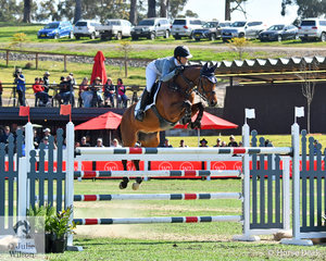 Every team must present a Young Rider and the Horsepower team Young Rider, Erin Buswell and her, 'Quero Quero' are pictured making a lovely jump over this oxer in round one of the Australian Teams Jumping League.