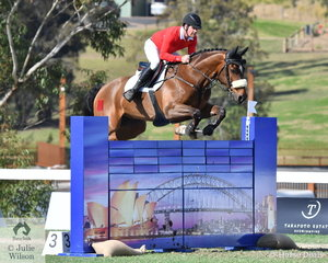 Billy Raymont and 'Anton' jumped a double clear to help the Willinga Park Team take third place in the Australian Teams Jumping League competition.
