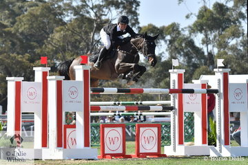 Clint Beresford from Bega is a member of the Takapoto Estate NZ Team and is pictured putting in a first round clear riding his wonderful, 'Emmaville Jitterbug'.