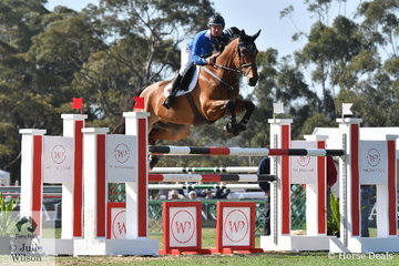 Jamie Kermond rode his WEG team mate, 'Yandoo Oaks Constellation' to post a super double clear and lead Team Yandoo to second place in the inaugural Australian Teams Jumping League.