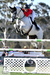 The impressive combination of Katie Laurie and 'Casebrook Lomond' making a super jump on their way to helping the Willinga Park Team take third place.