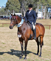 """Di Phillips and her lovely Champion Newcomer Small Hack """"La Bella""""."""