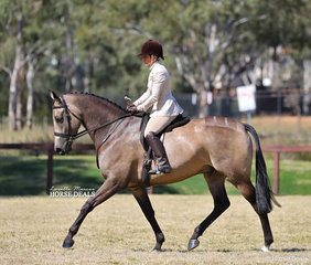 """Jean Hull and """"Dusty Dancer"""" won the Preliminary Small Show Hunter Hack Championship."""