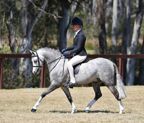 """Tammin Glover and """"Bamborough Banknote"""" won the Medium Show Hunter Pony Best Newcomer and were Runners Up in the Open Medium Show Hunter Pony event."""