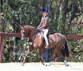 """""""Burnewang Waterman"""" and Olivia Carter pictured working out in the Open Medium SHow Hunter Pony event."""