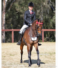 """Robbie McKinnon pictured riding """"Ainsley Above And Beyond"""" in the Open Small Galloway event."""