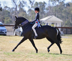 """Elizabeth Taylor and """"One Night In Paris"""" were declared Champion Large Show Hunter Galloway exhibit."""