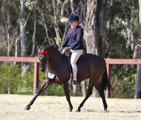 """""""Highcroft Copy Cat"""" and Kylie Douglas placed third in the Large Show Pony event."""