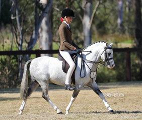 "Alex Berle rode ""Bamborough Catapulte"" to win Champion Graduate Small Show Hunter Pony & Champion Owner/Rider Small Show Show Hunter Pony."