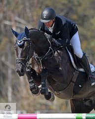 Brook Dobbin from the Yarra Valley in Victoria has had a great show. He is pictured aboard Wendy Keddell's, 'Gina MVNZ' that jumped a double clear to take sixth place in the Fielder's Roofing Mini Prix today.