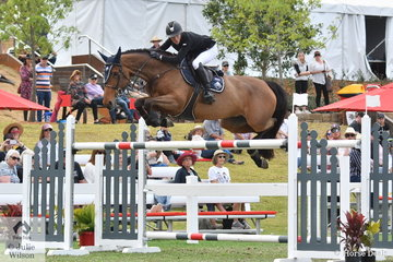 Olivia Hamood from Queensland had a very good show. This afternoon Olivia rode Jane Fonda DVD to jump a double clear round in the Willinga Park Grand Prix to take second place and the $15,000 prize money.