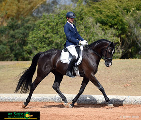 The first combination out to start the day was Harvey Besley riding Belrock World Domain setting the bar high in the Open Preliminary 1B test at the 2019 QLD State Dressage Championships.