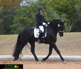 Showing great potential in the dressage ring is 5yo Friesian Stallion, Wester Fan T Lakerveld with rider Gary Lung in the Open Preliminary class on the first day of the QLD State Dressage Championships.