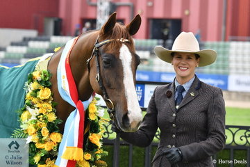 Fiona Gordon is pictured with her successful, 'Gordanvale Casanova' (Royalle Heartacte/Quiera Cassie) that was declared Champion led Male and Supreme Champion Led Australian Stock Horse.