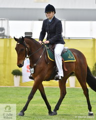 Keyara Garraway claimed the class for Australian Stock Horse Gelding 15hh and Over  with her typey, 'Watchirs Cosmos' (Watchirs Star/W. Lilly).