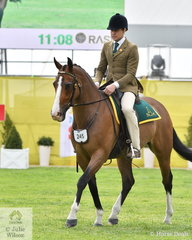 Reece Lawton rode his 'J Star Hollywood' (Haydon Orbital/J Star All For Love) to take fourth place in the class for Australian Stock Horse Hack Gelding 15hh and Over.
