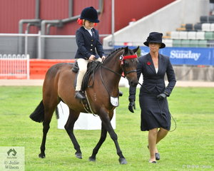 Karen Shaw's, 'Xanadu of Sefton' took fifth place in the class for Leading Rein Pony 12 Hands and Under.