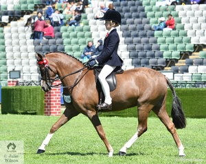 Jessica Sharp from Launching Place in the Yarra Valley took second place in the class for Junior Rider 10-12 Years.