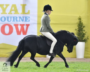 Taylor Arnett rode Emily Machar's, ' Carreg Wen Athena' to win the class for Shetland 10hh and Under and Resrve Champion Shetland.