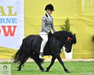 Daizi Plum rode Dale Plumb's, 'Balnagowan Bonnie Laird' to third place in the Novice and fourth place in the class for Open Shetland Pony 10-10.2hh.